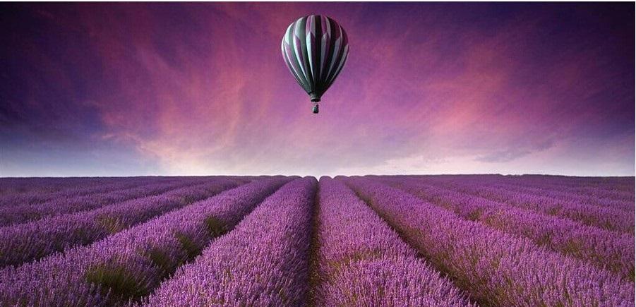 普罗旺斯蜜月游中坐热气球