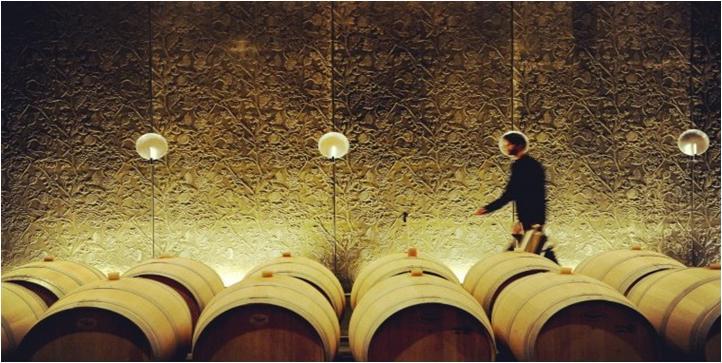 参观木桐葡萄酒庄