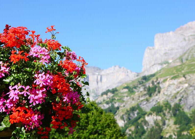 瑞士自然风光
