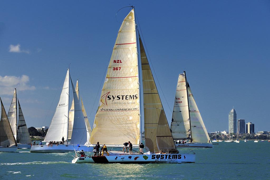 新西兰奥克兰帆船