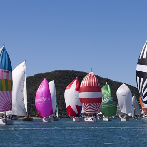奥迪汉密尔顿帆船周