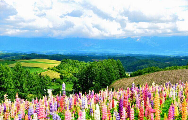 日本北海道Hokkaido