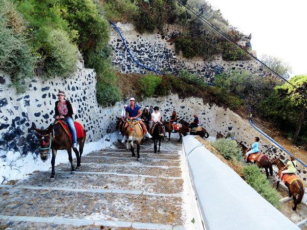 圣托里尼骑驴