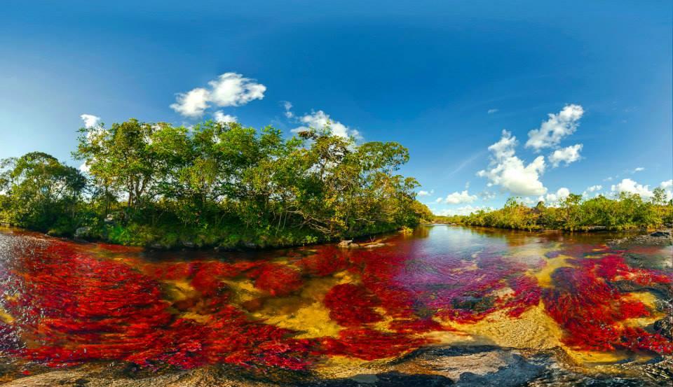 哥伦比亚彩虹河