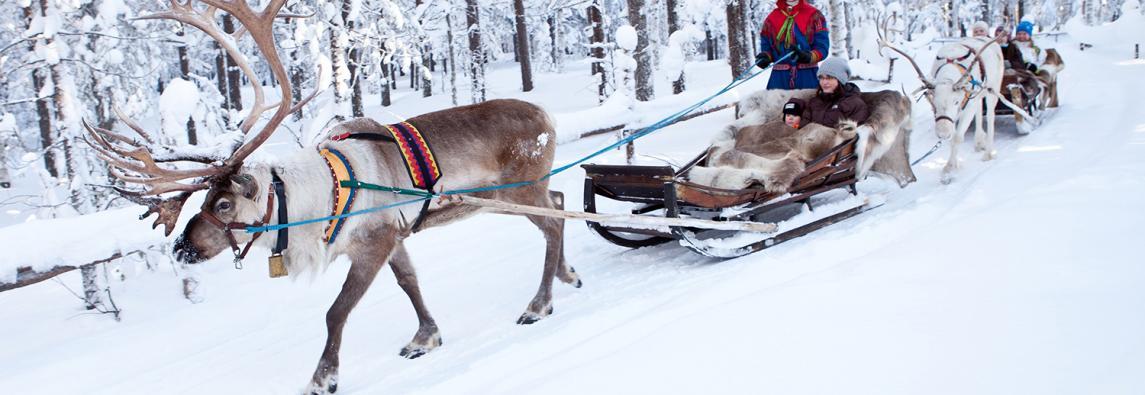 芬兰罗瓦涅米活动